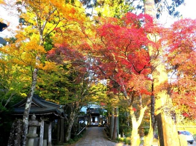 長安寺の紅葉(箱根)